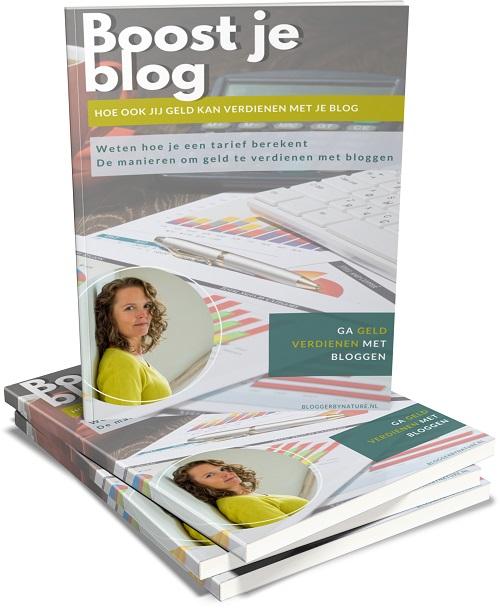 geld verdienen met je blog doe je zo