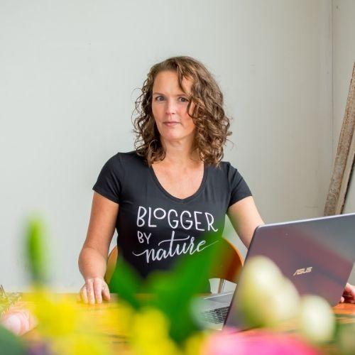 online cursus voor bloggers